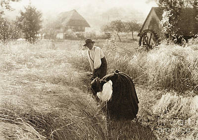Photograph - Germany, Black Forest, 1894.  by Granger