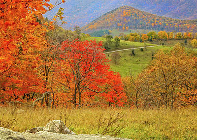 Photograph - Germany Valley Dressed In Autumn by Jaki Miller