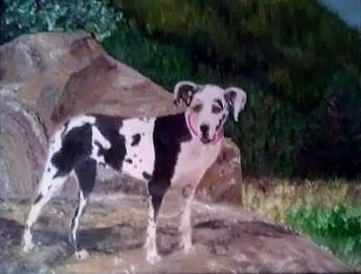 Great Dane Oil Painting - Gertrude by Karen Fonda
