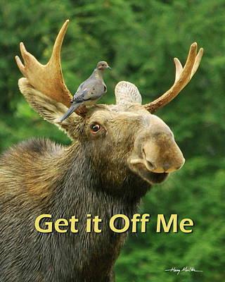 Photograph - Get It Off Me by Harry Moulton