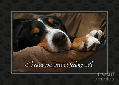 Digital Art - Get Well Sad Pup by JH Designs