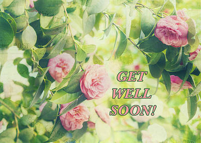 Photograph - Get Well Soon 1 by Marianne Campolongo