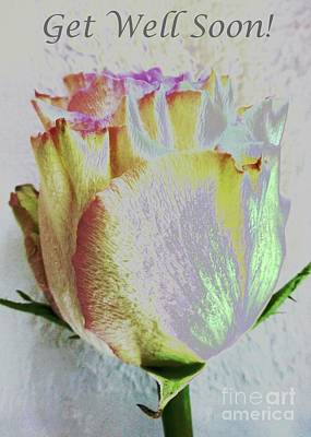 Photograph - Get Well Soon Rose Wishes by Barbie Corbett-Newmin