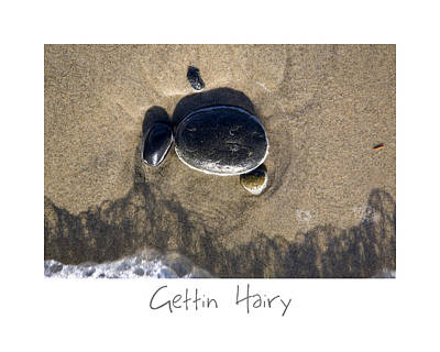 Photograph - Gettin Hairy by Peter Tellone