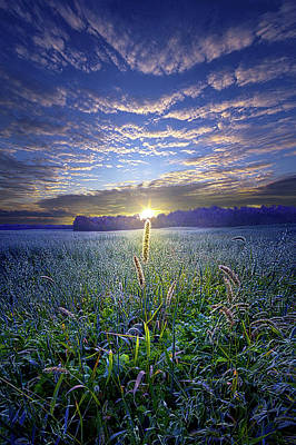 Photograph - Getting Closer Every Day by Phil Koch