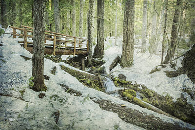 Photograph - Getting Through The Hard Times by Belinda Greb