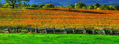 Photograph - Gettysburg At Rest - Fields, At Times, That Still Run Red - View From Mc Pherson Ridge Adams County by Michael Mazaika