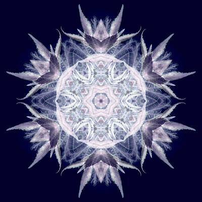 Mandala Photograph - Ghost Array I by Marsha Tudor