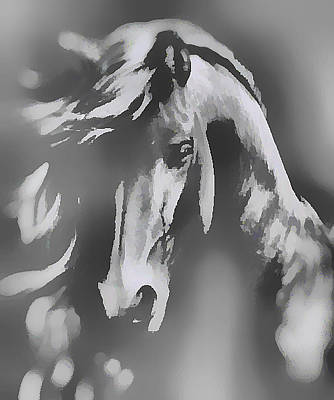 Digital Art - Ghost Horse by Barbara A Lane