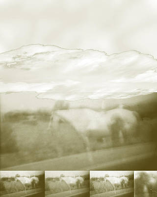 Digital Art - Ghost Horse Colorado by Ann Tracy
