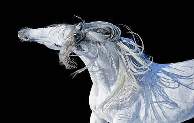 Ghost II Art Print by Ekaterina Druz