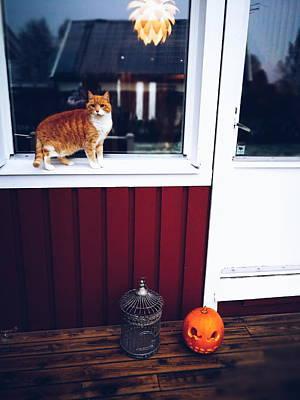 Photograph - Ghost In Halloween by Tamara Sushko