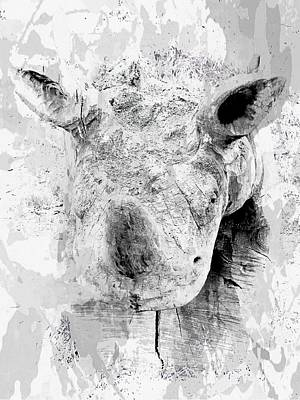 Photograph - Ghost Of A Rhinoceros by Dorothy Berry-Lound