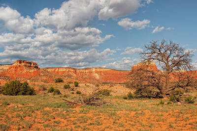 Photograph - Ghost Ranch by Kay Brewer