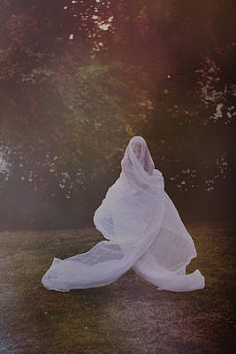 Photograph - Ghost by Stephanie Hollingsworth