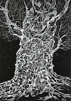 Drawing - Ghost Tree by Charles Cater