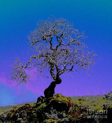 Ghost Tree Art Print by JoAnn SkyWatcher