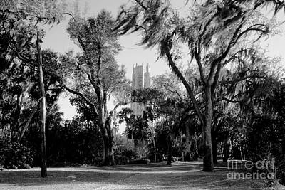 Ghostly Bok Tower Art Print by David Lee Thompson