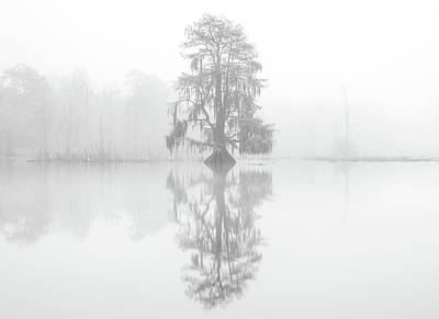 Photograph - Ghosts In The Mist by Andy Crawford