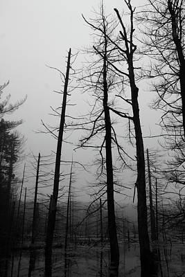 Photograph - Ghosts by Jeff Heimlich