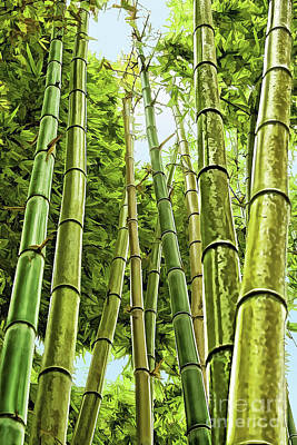 Photograph - Giant Bamboo by Gabriele Pomykaj
