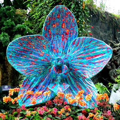 Photograph - Giant Blue Flower by Randall Weidner