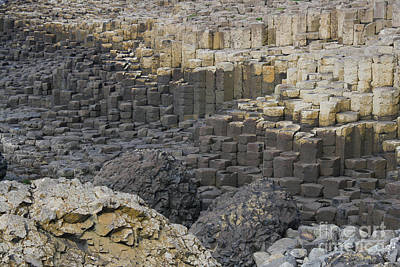 Photograph - Giant Causeway by Mary-Lee Sanders