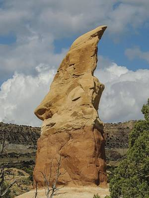 Photograph - Giant Elf's Head Hoodoo Devil's Garden by NaturesPix