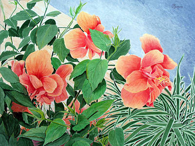 Giant Hibiscus Art Print by Colleen Marquis