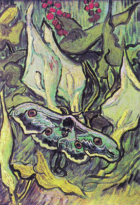 Painting - Giant Peacock Moth On Arum by Vincent van Gogh