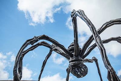 Photograph - Giant Spiders Of Crystal Bridges by Steven Bateson