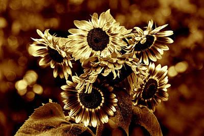 Giant Sunflowers Art Print by Kathleen Stephens