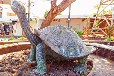 Photograph - Giant Tortoise Statue In Puerto Ayora On Santa Cruz Island  In G by Marek Poplawski
