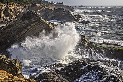 Photograph - Giant Wave by Wes and Dotty Weber