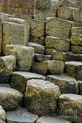 Photograph - Giant's Causeway #2 by Elvis Vaughn