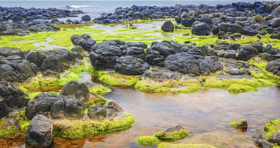 Photograph - Giants Causeway Seascape by Lexa Harpell