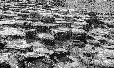 Photograph - Giants Causeway Stepping Stones by Lexa Harpell