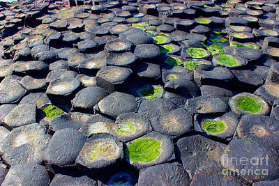 Photograph - Giant's Causeway Stones by Nina Ficur Feenan