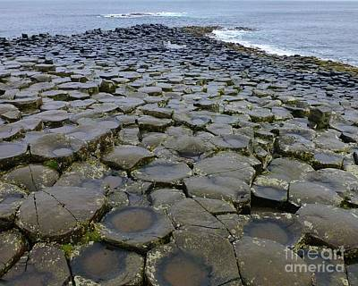 Photograph - Giants Causeway To The Sea by Barbie Corbett-Newmin