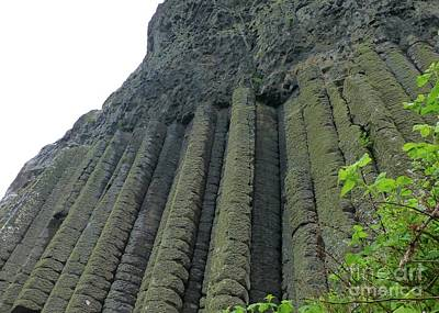 Photograph - Giants Causeway Upright Columns by Barbie Corbett-Newmin