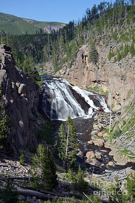 Photograph - Gibbon Falls Cascading Into Gibbon River In Yellowstone National Park by Shawn O'Brien