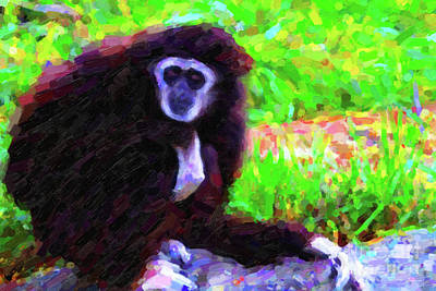 Gibbon Art Print by Wingsdomain Art and Photography