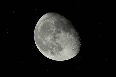 Photograph - Gibbous by Morgan Wright