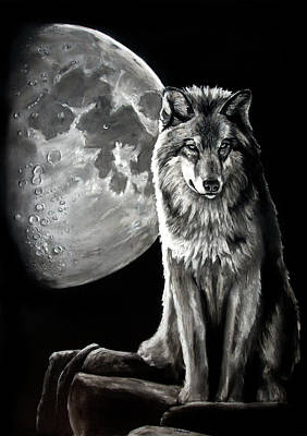 Drawing - Gibbous Wolf by William Underwood