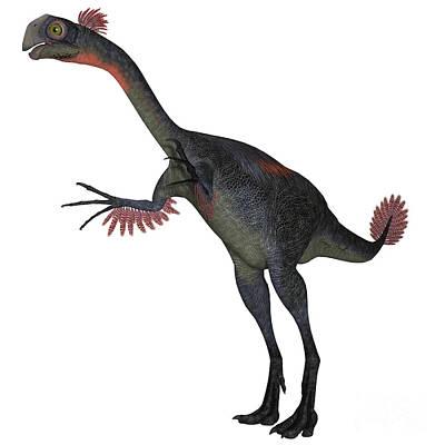 Prehistoric Digital Art - Gigantoraptor Dinosaur On White by Corey Ford