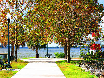 Photograph - Gilbert Park In Mt Dora  by Elyza Rodriguez