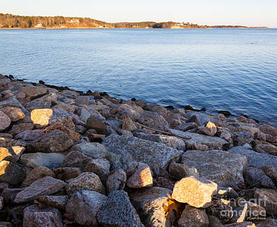 Photograph - Gilded Shoreline by Michelle Wiarda-Constantine