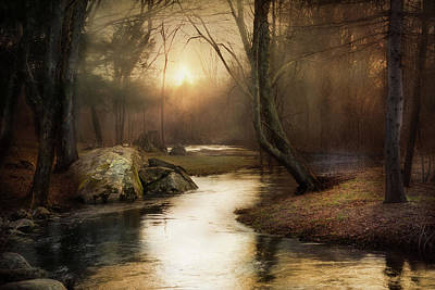 Art Print featuring the photograph Gilded Woodland by Robin-Lee Vieira