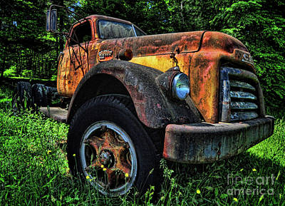 Photograph - Jimmy Diesel by Randy Rogers