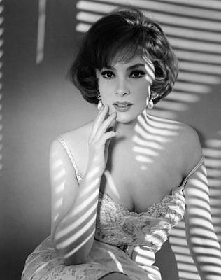 Ev-in Photograph - Gina Lollobrigida, Ca. Early 1960s by Everett